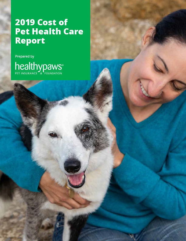 Is Pet Insurance Worth It Pet Insurance Cost Saving Healthy Paws