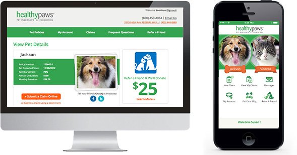 1 Pet Insurance In New York For Dogs Cats Healthy Paws