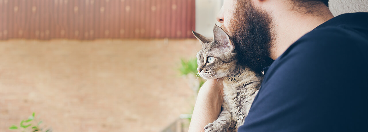Small multi-colored cat being held by owner with beard