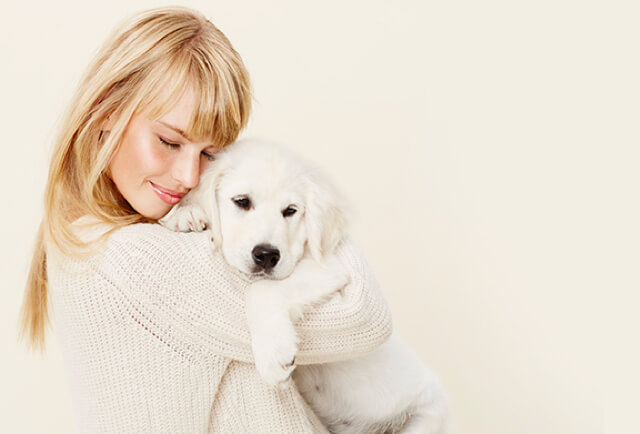 Pet Insurance for Dogs & Cats - Rated Best Plan 2020 ...