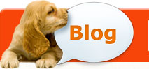 Healthy Paws Pet Insurance Blog