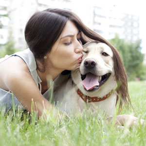 Healthy Paws Pet Insurance plan covers everything that matters including accidents, illnesses, cancer, emergency care, genetic conditions, and alternative care